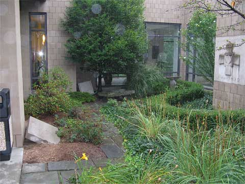 Before & After Gallery - Treasured Earth Landscape Design & Build - churchbefore